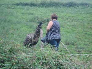 Leire, mujer de Alberto, alimentando al emú (Foto: Mª José Acevedo)